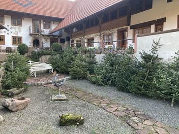 Brände, Liköre, Essig vom Brunnenhof in Prinzbach