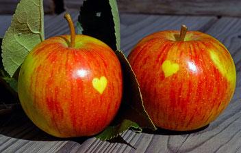 Herzapfel von Steglitz