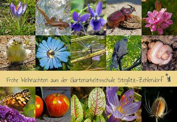 Rückblick, Gartenarbeitsschule