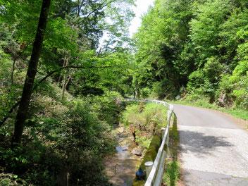 上品野町から三国山へ続く林道。