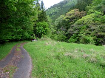 連谷町の林道入口付近。