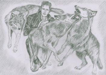Wolfsrudel, Tierkommunikation
