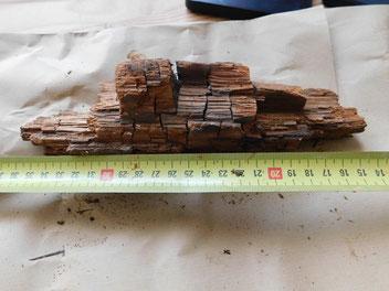 Mérule : pourriture cubique brune du bois attaqué par de la mérule.