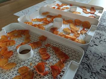 野菜乾燥機で柿チップスを作る