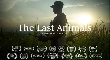 ©THE LAST ANIMALS