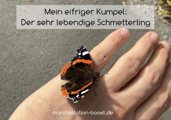 Mein eifriger Freund: Der sehr lebendige Schmetterling