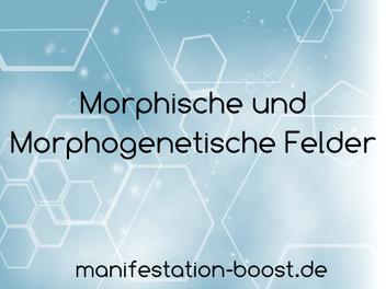 Morphische und Morphogenetische Felder