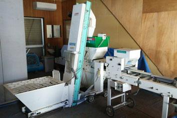 【アルファイノベーション】白ネギ生産
