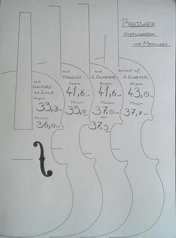 Bratschen in verschiedenen Größen mit unterschiedlichen  Saitenlängen