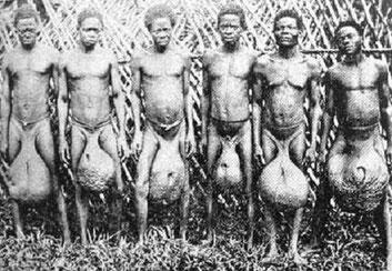 Uomini Tribù Bubal