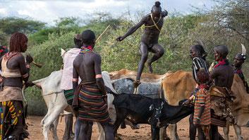 La cerimonia del salto dei tori in un villaggio Hamer, nel profondo sud dell'Etiopia