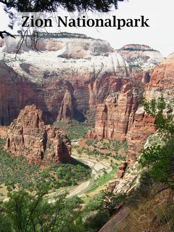 USA Rundreise: Reisebericht zum Zion Nationalpark und Kolob Canyons mit Wanderungen