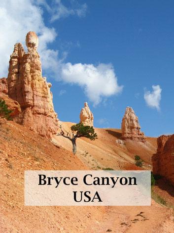 USA Reise: Nationalparks im Westen. Reisebericht zum Bryce Canyon.
