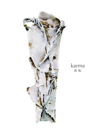 VISUAL BOOK「Karma」16P(B5変形版)