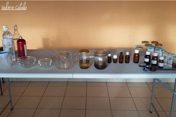 Atelier gemmothérapie macérats glycérinés de bourgeons phytothérapie vitalité bien-être santé naturelle formation initiation apprentissage toulouse occitanie