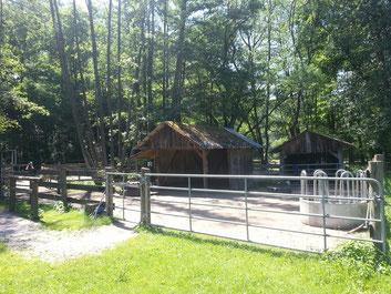 Eine Seite des befestigten Laufstalls. Die Ponys könnnen über die Brücke in den anderen Bereich.