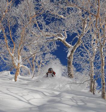 ski trip in Hokkaido
