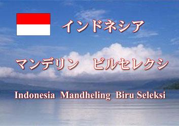 インドネシア マンデリン
