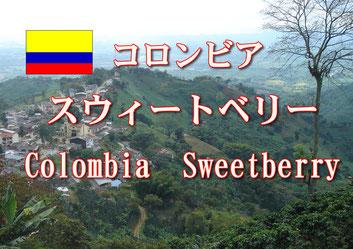 コロンビア プリマベーラ 中煎り