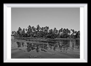 Fotografie Indien