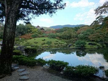 依水園のお庭 ゆっくりと堪能できます。 京都観光タクシー永田信明