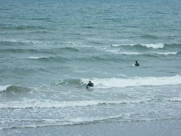 冬の波~って感じでした。