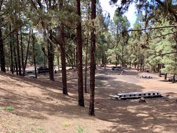 Kanarischer Grillplatz im Wald