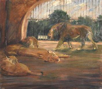 Löwen im Tiergarten - eine von Hunderten von Darstellungen des Königsder Tiere aus der Hand von Otto Dill.