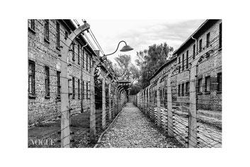 """""""Il silenzio dopo l'inferno"""", Per Non Dimenticare: Auschwitz. 27 Gennaio - Giorno Della Memoria ~ PhotoVogue Italia by VOGUE. © Luca Cameli Photographer"""