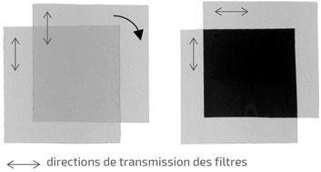 filtres polarisants parallèles et croisés