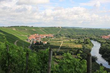 Weinort Escherndorf