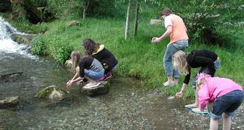 Keschern am Fischpass in Baunach - Bild: Fuchsenwiese
