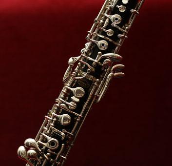 Ausbildung am Instrument, Blasinstrument