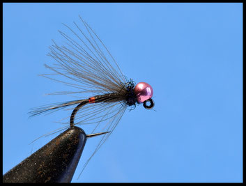 French Nymph Amo: jig Bead: metallic pink Coda:gallo nero Tip:tinsel olo rosso Corpo: filanca nera Hackle: cdc natural Torace: spectra dub 51