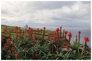 Ginetes - Sao Miguel, Azoren