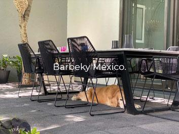 Silla de metal tejida para comedor uso interiores y exteriores.