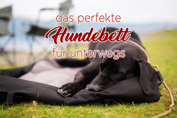 Hundebett_outdoor_unterwegs_Reisebett_wasserfest