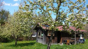 Hütte des Gartenbauverein Puch