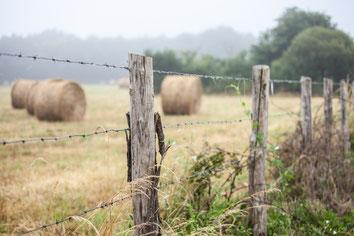 Campagne brumeuse française avec champs et botte de foin dans les Deux-Sèvres Région Nouvelle-Aquitaine France Europe photo par Marie Deschene photographe Pakolla