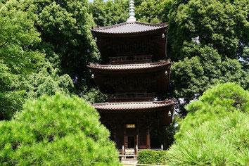20年間年間庭園管理をしていた椿山荘