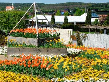 Kittenberger, Blumengarten