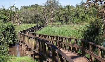 Saiwa Swamp National Park