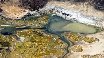 Lago Logipi e fenicotteri