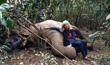 Kuki Gallman accanto al cadavere di un elefante appena abbattuto dai bracconieri