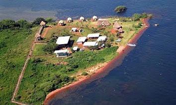 Isola di Ngamba Chimpanzee - Lago Vittoria, Uganda