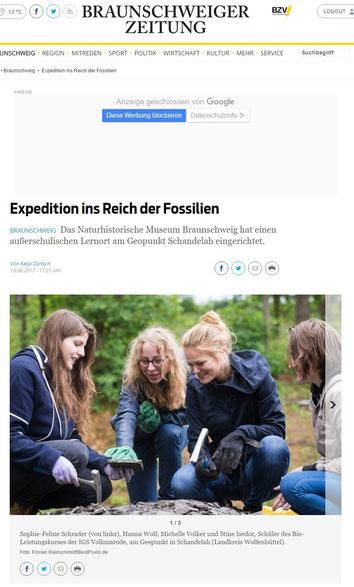 Braunschweiger Zeitung vom 13.06.2017