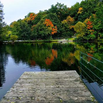 Teich in Burkhardtsdorf Sachsen