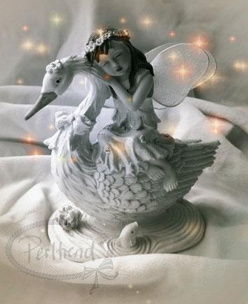 www.perltrend,com luzern Perltrend Onlineshop Schmuck Jewellery Perlen Pearls Accessoires Bilder Foto Videos Winter Weihnacht Neujahr Fasnacht