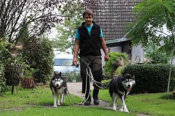 Bufdi mit zwei Huskies an der Leine