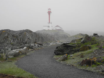 Nebel am Cape Forchu